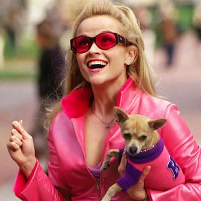 The Adventurine Posts A Lookback at the Bling and Brilliance of 'Legally Blonde'