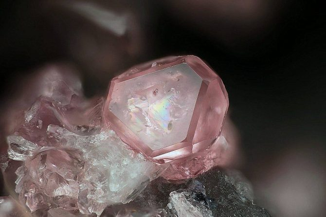 Eudialyte Poudrette quarry in Canada. Photo Stephan Wolfsried