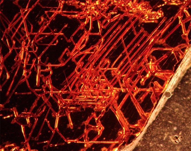 Microscopic tubular structures found within red garnets may be caused by the burrowing of microorganisms. Photo Ivarsson et al, 2018