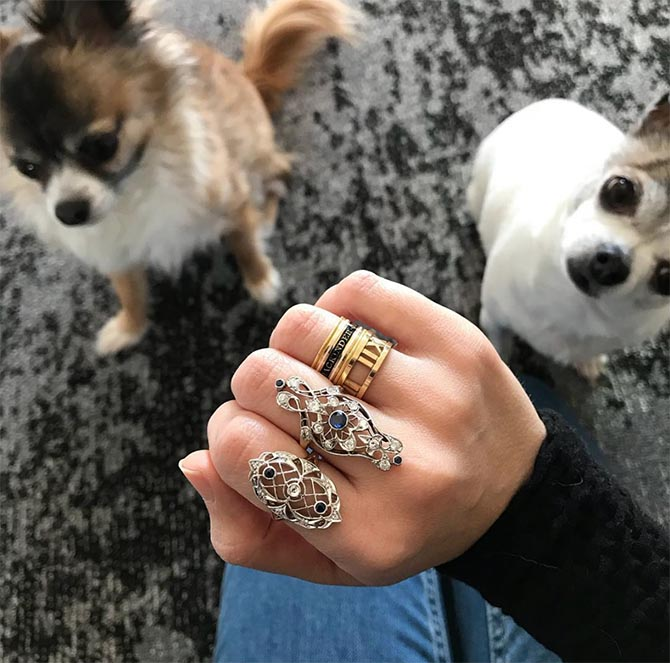 Danielle Miele aka Gem Gossip with her dogs Frankie and Chiefy. Photo @GemGossip/Instagram