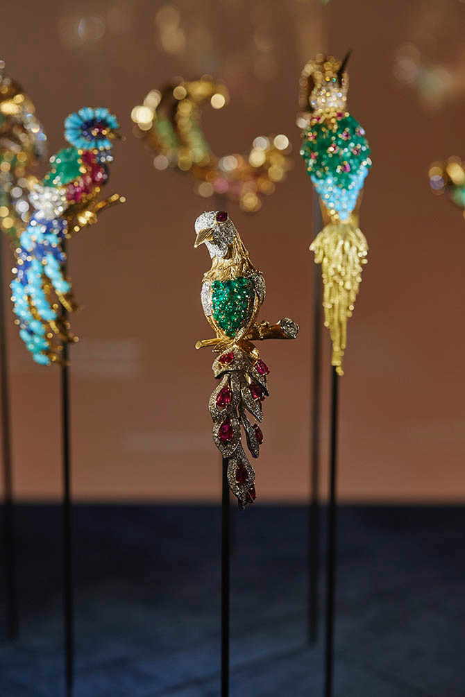 Some of the jewels in the Birds of Paradise exhibit at L'École in Paris. Photo courtesy